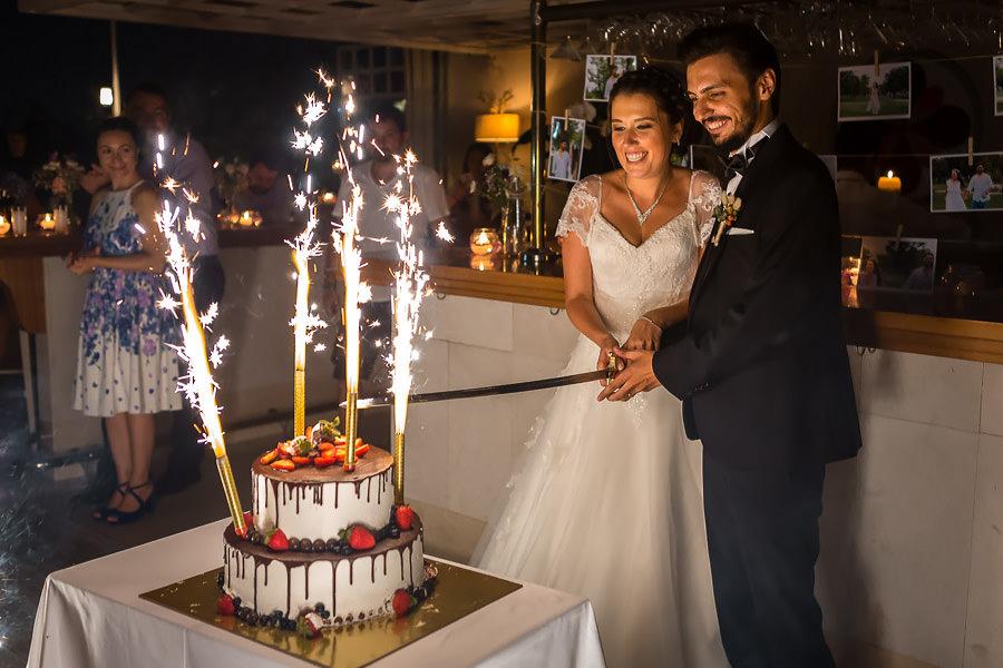 sardunya düğün pastası kesimi